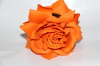 double fleurs Orange N°10